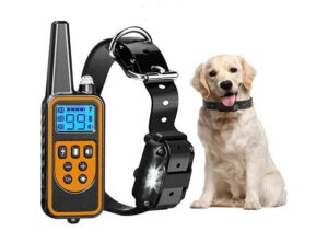 Best Dog Training Collar for small dog with Remote
