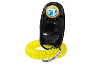 Dogtra ARC Remote Training Collar with Rechargeable battery