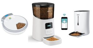 What is The Best Automatic Pet Feeder to Buy in 2021